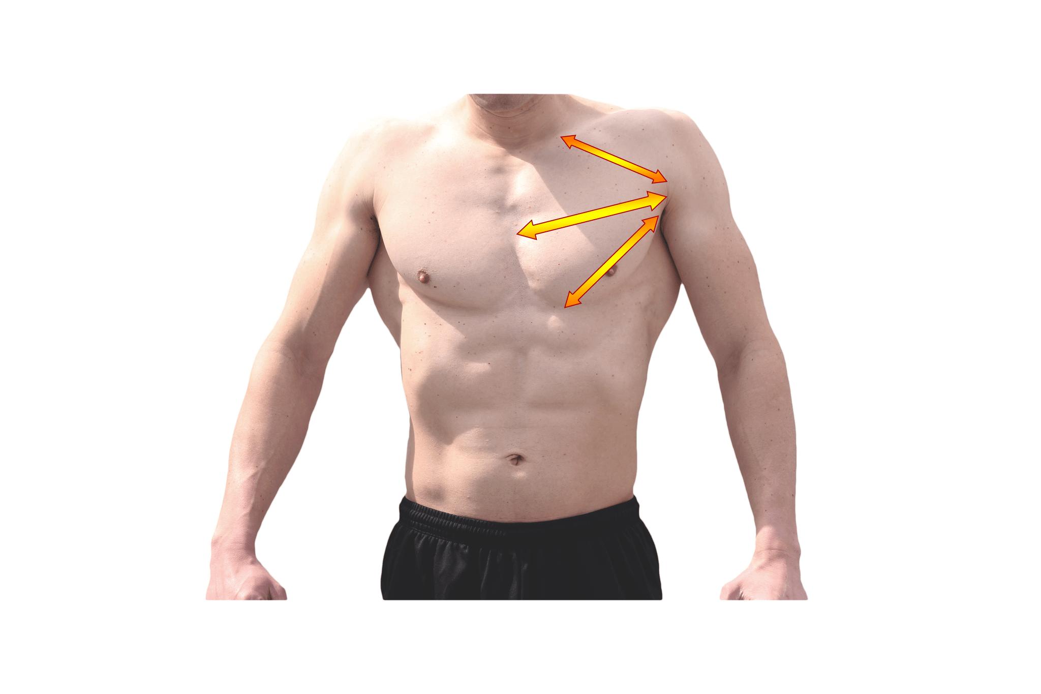 ホームトレで理想の男らしい胸板(大胸筋)をつくる8つのトレーニング方法