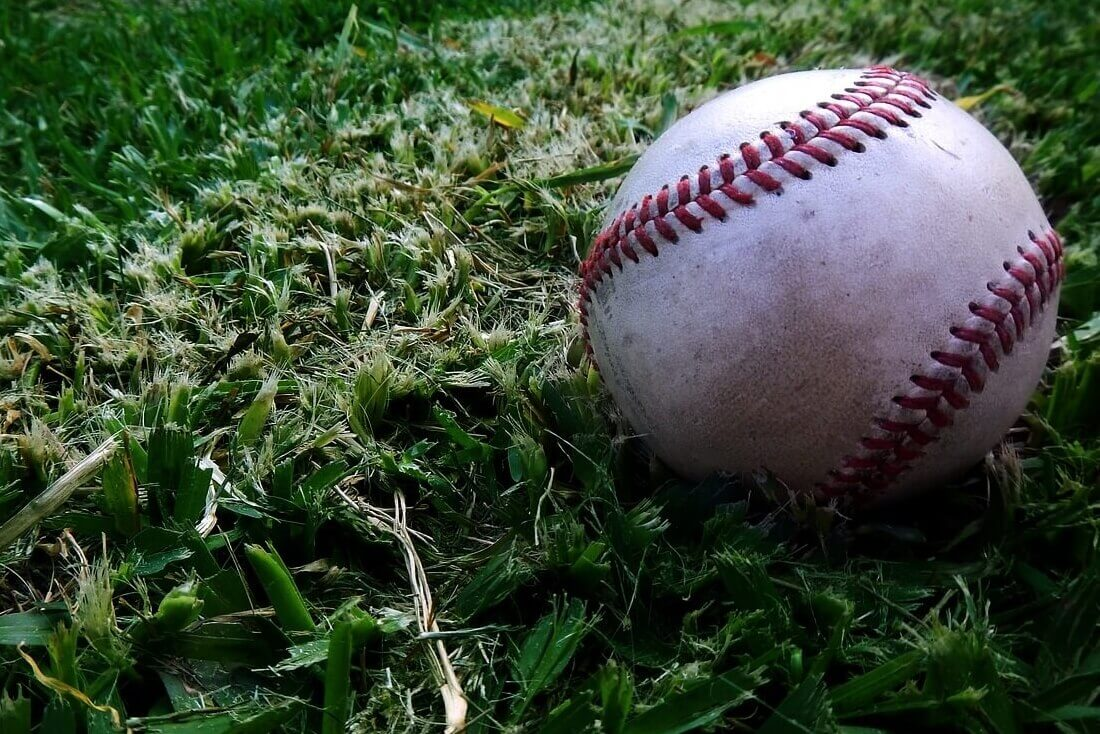 高校野球のプレイヤーは戦略的にプロテインを選択すべき