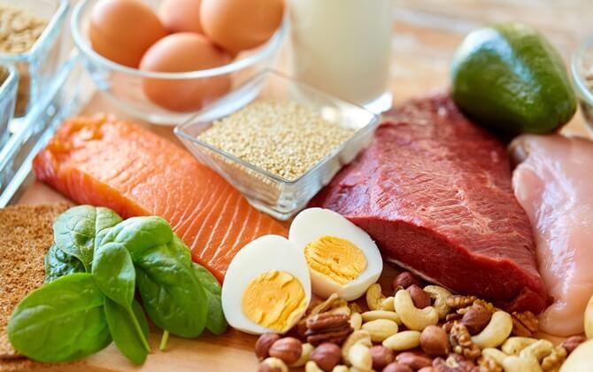 プロテイン(タンパク質)の役割