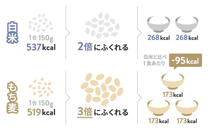白米ともち麦のカロリーの違い